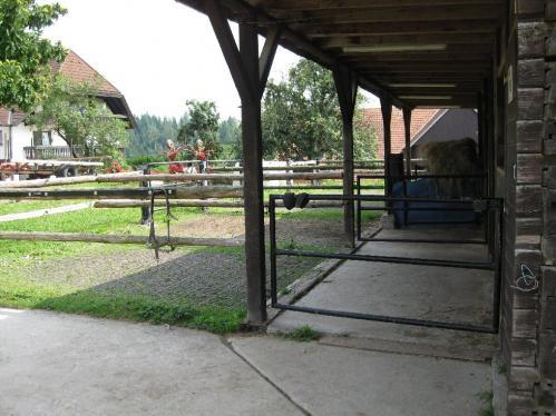 Henschenberg090809 056